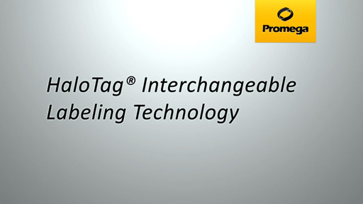 HaloTag Interchangeable Labeling Technology Animation